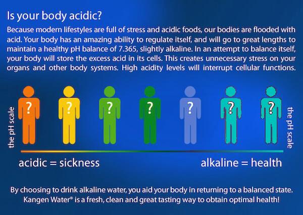body ph scale