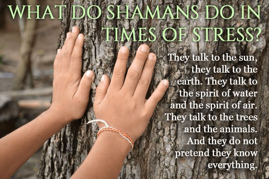 Tree Spirit - Shamans